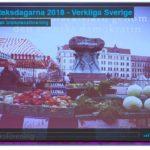 Min demokratiresa genom Sverige